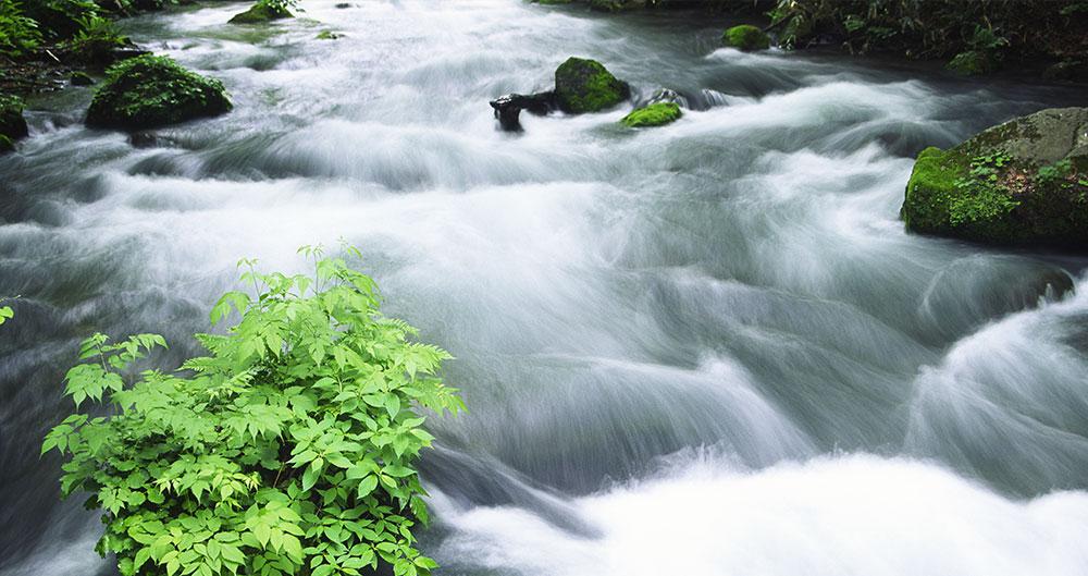 analisi-delle-acque